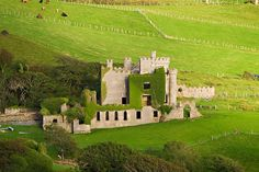 Ireland O'Ireland - You ARE Forty Shades of Gorgeous Green!