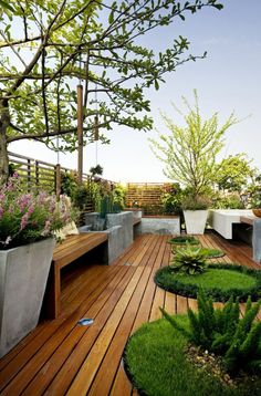 Terrace and garden layout idea