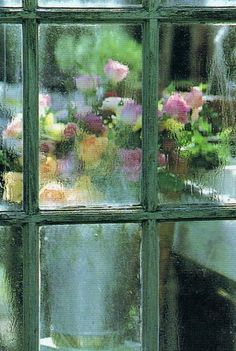 Flowers thru the window, in the rain
