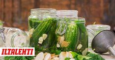 Avomaankurkut tuovat mieleen lapsuuden ja mummolan. Kurkut voi syödä leivän päällä, mutta niistä saa myös mainioita säilykkeitä. Pickles, Cucumber, Vegetables, Vegetable Recipes, Pickle, Zucchini, Veggies, Pickling