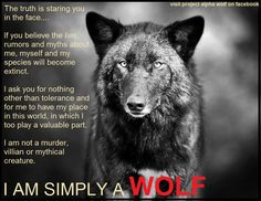 I am simply a wolf - if only the wolf haters could know this - they would soon learn to love one of God's most beautiful creations!!!
