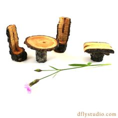 Miniature woodland fairy garden bistro and by DragonflyStudioArts, $14.95
