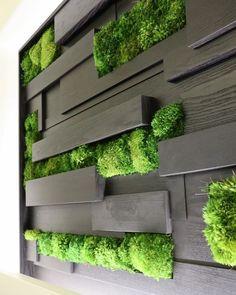 Vertical Garden Systems, Vertical Garden Wall, Garden Wall Designs, Garden Design, Wall Exterior, Exterior Design, Long Planter, Moss Wall Art, Walled Garden