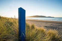 Access to the beach on Waikanae Beach, Kapiti Coast. Surfboard, New Zealand, Coast, Gallery, Beach, Image, Roof Rack, The Beach, Surfboards