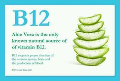 Tiredness Remedies Aloe Vera ,Source of Vitamin B 12 - is this true? Have not seen it listed as a source on anything else? Vitamin A, Sources Of Vitamin B, Vitamin B 12 Foods, Sources Of B12, Clean9, Vitamine B12, Fruit Juice Recipes, Smoothie Recipes, Forever Living Products