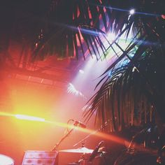 Glass Animals live at the Troubadour — owl you are