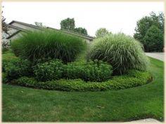 This garden landscap