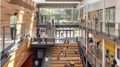 From bold structural glulam designs to striking textured wall and ceiling schemes, these award-winning building projects showcase the design possibilities using wood. Reed College, Performing Arts, Wood Design, Stairs, Woodworking, Building Designs, Wood Work, Architecture, Portland