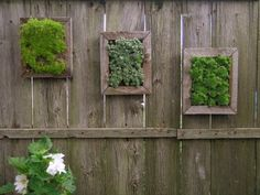 The green stuff is creating wall art for the garden.
