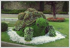 Stunning 73 Succulent Turtle Topiary Ideas For Your Garden Succulents Garden, Garden Plants, Diy Garden, Turtle Time, Topiary Garden, Tortoise Turtle, Plantation, Yard Art, Garden Projects