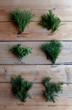 DIY Christmas wreath - No Home Without You blog (8 of 12)