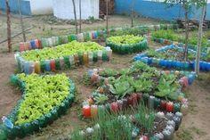 projeto horta caseira - Pesquisa Google