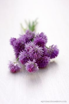 chive blossom vinegar - Only two ingredients but I loved scrolling the site it was fun.