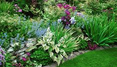Most Amazing Tropical Garden Landscaping Ideas, – garden design Small Tropical Gardens, Corner Garden, Garden Pots, Garden Ideas, Garden Landscaping, Landscaping Ideas, Garden Planning, Amazing Gardens, Natural Stones