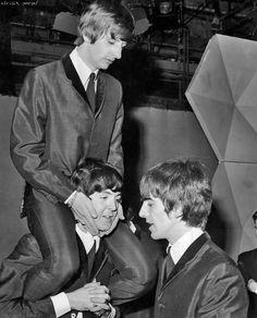 Ringo Starr, Paul McCartney, and George Harrison Beatles Funny, Beatles Love, Les Beatles, Beatles Photos, Beatles Guitar, Beatles Art, Ringo Starr, Paul Mccartney, Rock Music