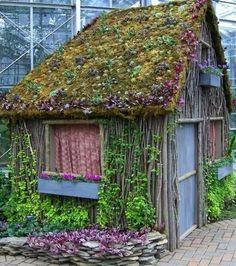 Living garden shed