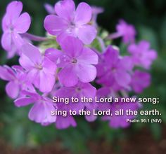 Sing to the Lord a new song; sing to the Lord, all the earth. Psalm 96:1