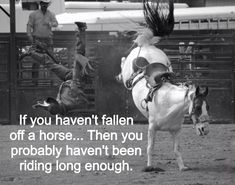 Horse quotes www.facebook.com/horselovelife