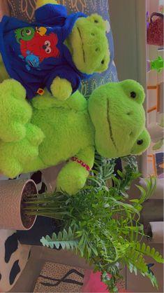 Frog family 😌🧃
