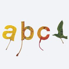 Graphic designer Twan van Keulen was inspired by fallen leaves, and cut them into letters a,b, and c, as well as a bird in flight.