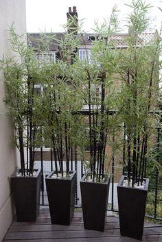 32 ideas apartment patio privacy plants balconies for 2019 Small Balcony Design, Small Balcony Decor, Balcony Plants, Outdoor Balcony, Small Patio, Balcony Ideas, Patio Ideas, Garden Ideas, Small Decks
