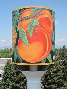 murals and signage for water tanks of all sizes at any geographical location Painting Process, Painting Lessons, Western Washington, Water Tower, Outdoor Art, San Francisco 49ers, Water Tank, Aerial View, Sheds