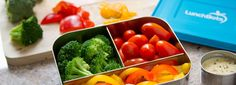 LunchBots® Online Shop | Edelstahl Brotdosen bei Kivanta