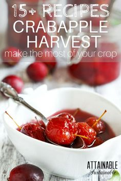 Whether you have a crabapple tree in your orchard or forage for crab apples, here are some great recipes to use this seasonal ingredient in your homestead kitchen! Fall Recipes, Real Food Recipes, Great Recipes, Summer Recipes, Crab Apple Recipes, Crab Apples, Grow Your Own Food, Canning Recipes, Recipe Collection