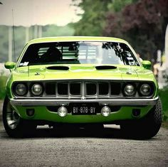 Cuda. So menacing!! Chevy Pickups, Exotic Cars, Pony Car, Sexy Cars, Plymouth Barracuda, Green Cars, Dodge Challenger, Baracuda Car, Automobile