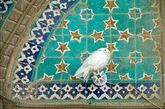 - Spiritual Pictures, Islamic, Spirituality, Kids Rugs, Photography, Inspiration, Home Decor, Homemade Home Decor, Biblical Inspiration