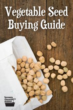Growing vegetables from seed is the easiest and cheapest way to start a garden. Learn about the different types of seeds, which seed companies are the best, and how to avoid GMO seeds. Also includes tips on storing your seeds so they last longer. #gardening #homestead #gardeningtips #vegetablegarden Growing Cherry Tomatoes, Growing Tomatoes In Containers, Growing Veggies, Types Of Vegetables, Planting Vegetables, Organic Vegetables, Starting A Vegetable Garden, Vegetable Garden For Beginners, Vegetable Gardening
