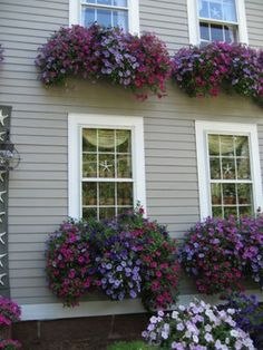 Awesome window boxes too!  Pinned from PinTo for iPad  cuteee