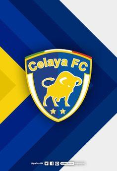 CelayaFC • LigraficaMX 020214CTG(3)