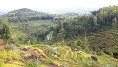 Carve hill by Bambang Nugroho on 500px