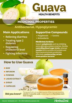 Guavas are a widely consumed fruit because of their sweet taste. Its leaves and bark are also full of nutrients and health benefits. Guava Health Benefits, Herbal Remedies, Natural Remedies, Guava Fruit, Guava Tree, Guava Leaves, Health Diet, Cholesterol, Herbalism