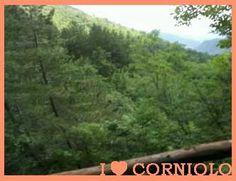 I love #Corniolo Giardino Botanico di Valbonella Una vista di #Sasso #Fratino che nel 2017 diventerà patrimonio dell'umanità.