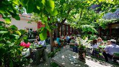 Die schönsten Gastgärten in Wien – Teil 1   1000things Stuff To Do, Things To Do, Vienna, Plants, Budget Travel, Sun Rays, Essen, Places, Vacation