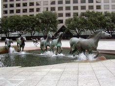 Los Mustangs de las Colinas. Texas, Estados Unidos.