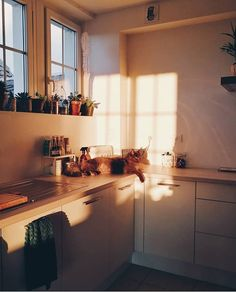 Your Kitchen is So Boring? Try These 6 Kitchen Decor Ideas to Make modern kitchen counter decor - Modern Decoration Modern Kitchen Counters, Best Kitchen Design, Up House, Morning Light, French Country Decorating, Country Kitchen, Modern Decor, Layout Design, Design Ideas