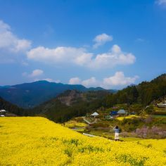 City's Pride✈さんの投稿/神山町 | ことりっぷ Co Trip, Japan Landscape, Mountains, Nature, Travel, Peace, Outdoor, Paisajes, Outdoors