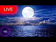 🔴 Deep Sleep Music, Meditation Music, Sleep, Calm Music, Zen, Relax, Study Music, Sleep MusicWelcome everyone! I hope your are having an amazing Day/Night! Get back loosen up your body take a deep breath and enjoy my music with the beautiful imagery from all around the world!   All music composed by Astro Universe - Relaxing Music  If you need music to help you sleep and suffer regularly with insomnia  use this sleeping music in the background as calm music for soothing relaxation or as… Yoga Music, Meditation Music, My Music, Calming Music, Relaxing Music, Deep Sleep Music, Stress Relief Music, Zen, Cinema