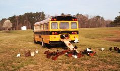 "Cool Coops! -- Community Chickens  School Bus Coop - ""The Cluck Bus!"""