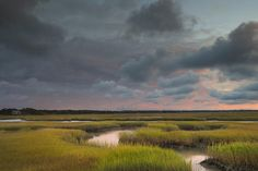Cape Cod Photograph - Cape Cod Marsh by Betty Wiley