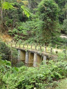 Bokor-old-bridge.jpg (408×544)