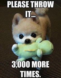 Please throw it...