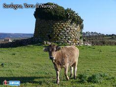 nuraghi   Titolo: Sardegna, Terra di Nuraghi