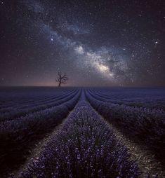 Starry night in Valensole France Beautiful Sky, Beautiful Landscapes, Beautiful World, Beautiful Pictures, Sky Full Of Stars, Star Sky, Landscape Photography, Nature Photography, France Photography