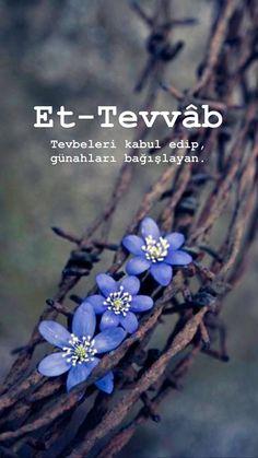 Allah Islam, Argo, Flowers, Photos, Floral, Royal Icing Flowers, Florals, Allah, Flower