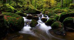 Rzeka, Strumyk, Omszałe, Kamienie, Liście, Drzewa, Las Waterfall, Outdoor, Outdoors, Waterfalls, Outdoor Games, The Great Outdoors