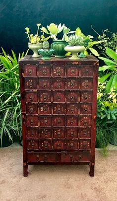Antique Chinese Apothecary Cabinet, Doctors Herb Medicine Cabinet 37 Drawers